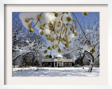 South Lawn of Thomas Jefferson's Home Monticello Framed Photographic Print by Steve Helber