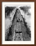 A Trainload of Sandbags is Transported to Line the Mississippi Mainline Levees Framed Photographic Print