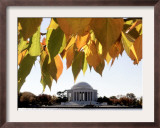 Fall Foliage Frames the Jefferson Memorial on the Tidal Basin Near the White House Framed Photographic Print by Ron Edmonds