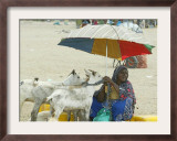 A Somaliland Woman Waits for Customers, in Hargeisa, Somalia September 27, 2006 Framed Photographic Print by Sayyid Azim
