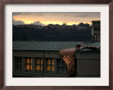 A Worker Cuts a Piece off a Roof That was Torn Away During a Storm in Prague, January 19, 2007 Framed Photographic Print by Petr David Josek