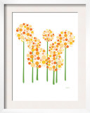 Orange Alliums Prints by  Avalisa