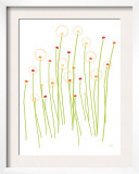 Orange Dandelion Print by  Avalisa