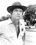 David Janssen - Moon of the Wolf Photo
