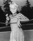 Dennis the Menace Photo