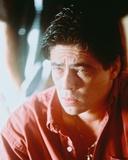 Benicio Del Toro Photo