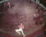 Burt Lancaster - Trapeze Photo