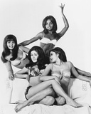 Beyond the Valley of the Dolls Photo