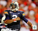 Cam Newton Auburn University Tigers 2010 Action Photo