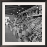 Retail Vegetable Markets Line the Decatur Street Side of the French Market Framed Photographic Print