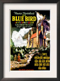 The Blue Bird, 1940 Prints