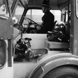 Fireman Sam Photographic Print by Chaloner Woods