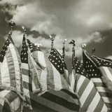 Row of American Flags Photographic Print