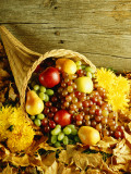Cornucopia Filled With Harvest Fruit For Thanksgiving Photographic Print by H. Armstrong Roberts