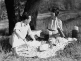 Couple Enjoying Summer Picnic Photographic Print by H. Armstrong Roberts