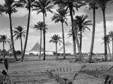 Scenic View of Great Pyramids at Giza Seen From Farming Field Fotografisk tryk af H. Armstrong Roberts