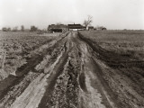 Dirt Road Leading Up To Old Farm House Surrounded By Barn and Sheds Photographic Print by H. Armstrong Roberts
