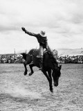 Rodeo Cowboy Fotografisk trykk av H. Armstrong Roberts