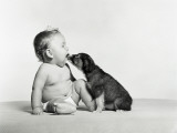 Baby and Dog Photographic Print by H. Armstrong Roberts