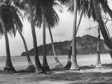 Nicaraguan Beach Photographic Print