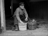 Oyster Salt Photographic Print