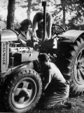 Land Army Photographic Print
