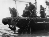 Oyster Dredgers Photographic Print