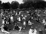 Zoo Picnic Photographic Print