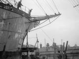 Merchant Ship Photographic Print