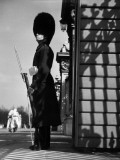 Palace Guard Photographic Print by Chaloner Woods