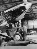 Bi-Plane Photographic Print