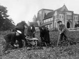 Alton Abbey Photographic Print