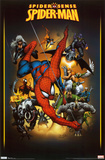 Spider-Man - Adversaries Prints