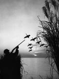 Man Duck-Hunting Photographic Print