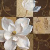 Southern Garden I Prints by  Nan
