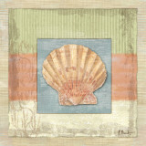 Montego Scallop Prints by Paul Brent