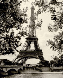 Eiffel Tower II Print by Amy Melious