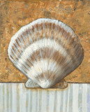 Vintage Shell III Poster by K. Bates