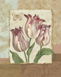 Flower Trio I Prints by Pamela Gladding