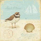 Natural Seashore I Prints by Daphne Brissonnet