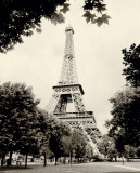Eiffel Tower I Poster by Amy Melious