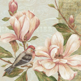 Magnolia Collage II Prints by Pamela Gladding