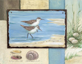 Sandpiper Collage I Posters by Paul Brent