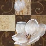 Southern Garden II Prints by  Nan