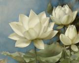 Lotus II Posters by Igor Levashov