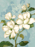 Magnolias Posters by Pamela Gladding