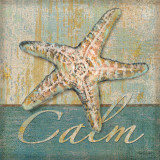 Calm Poster by Todd Williams