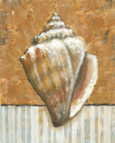Vintage Shell II Prints by K. Bates
