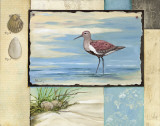 Sandpiper Collage II Art by Paul Brent