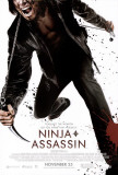 Ninja Assassin Prints